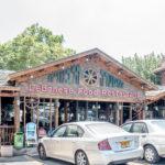 Abu Gosh: Ber?hmtes libanesisches Restaurant