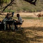 """""""Jenseits von Afrika"""" im Wadi Darbat"""