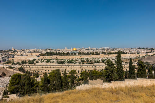 Blick von Dominus Flevit über die Altstadt