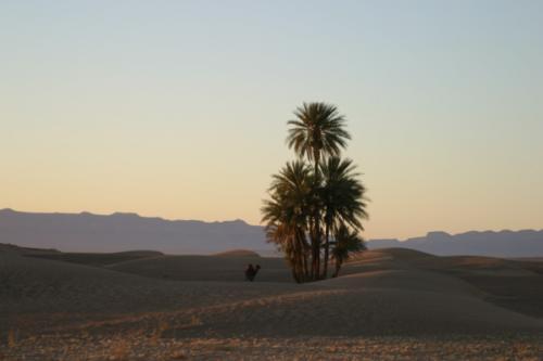 moroc_landscapes_13