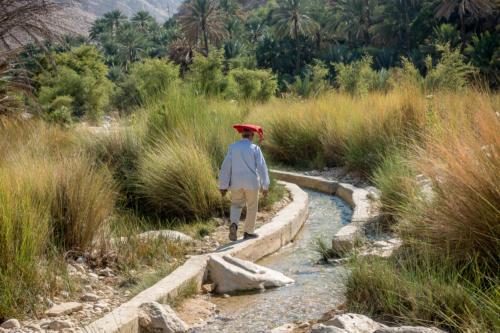 Im Wadi Bani Khalid, Mann am Faladsch-Kanal