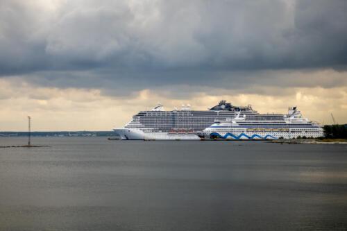Tallinn, MSC Seaview und AIDAaura