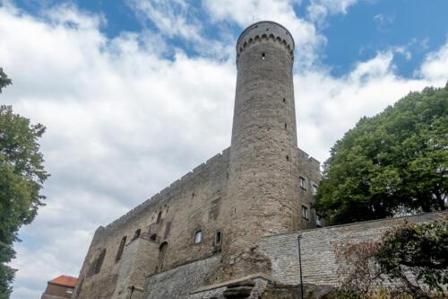 Tallinn, Langer Herrmann