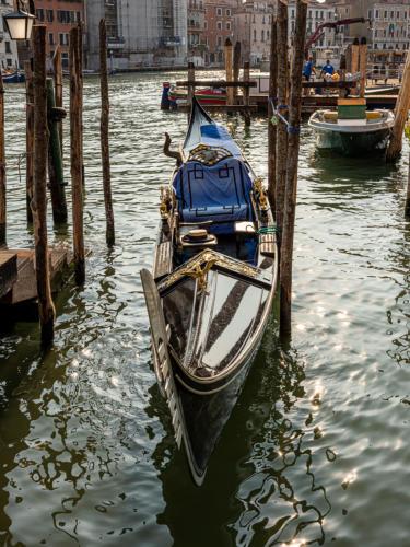 Vor dem Rialto-Fischmarkt
