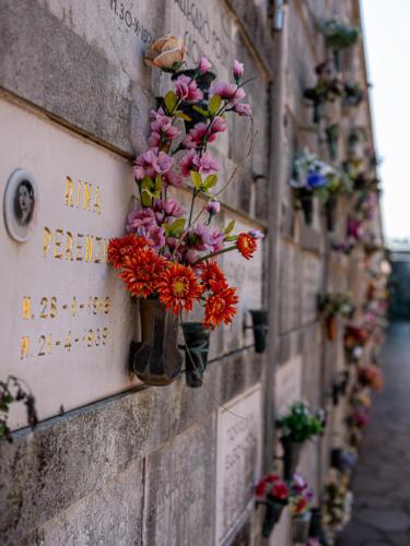 Friedhofsinsel San Michele