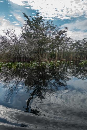Florida, Everglades