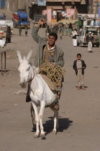 yemen_faces_19