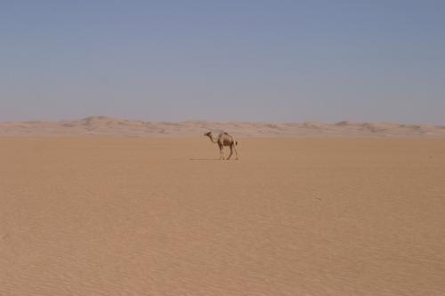 yemen_landscapes_17